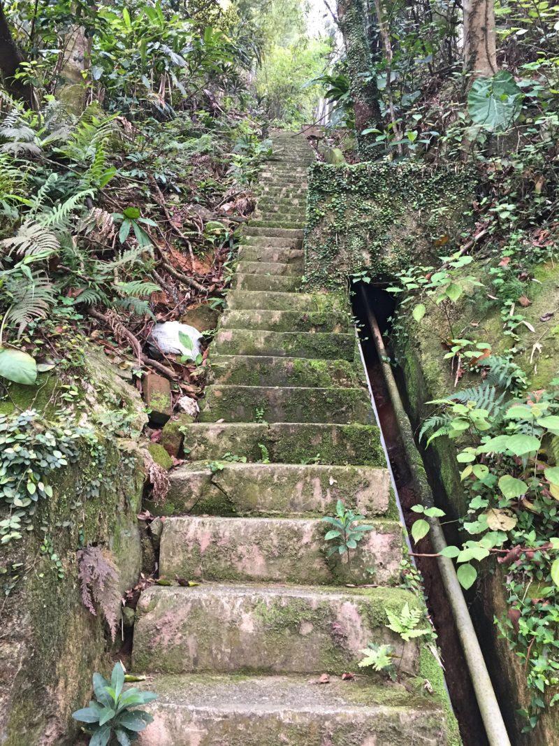 8 Free Things to Do in Hong Kong: Hike Victoria Peak