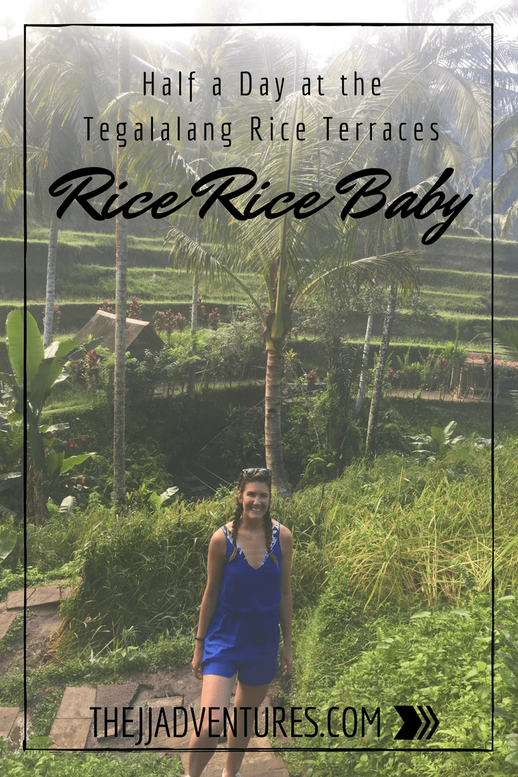 Rice Rice Baby: Half Day at Tegalalang Rice Terraces #jjadventures